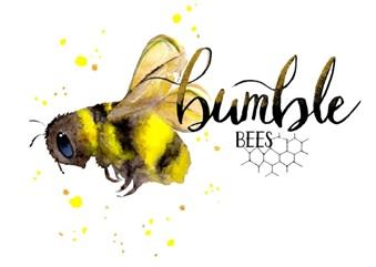 Bumble Bees Early Learning Centre